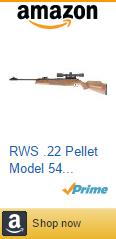 RWS .22 Pellet Model 54 Combo Rifle (Wood, Large)