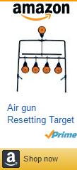 Air gun Resetting Target